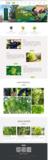 天津双街农业科技开发有限公司
